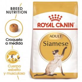 Royal Canin Razas Siamese 38 (Siamés) pienso para gatos