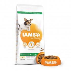 Pienso IAMS ProActive Health Adult Small & Medium
