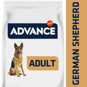 Advance German Shepherd - Pastor Aleman