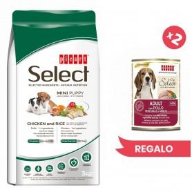 Picart Select Puppy Mini