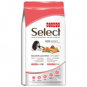 Select mini adult Salmon & Rice
