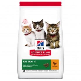 Hill's Science Plan Kitten alimento seco gatitos sabor pollo