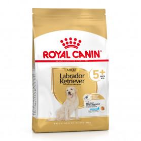 Royal Canin Labrador Retriever Ageing 5+ pienso para perro de edad avanzada de raza