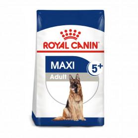 Royal Canin Maxi Adult 5+ pienso para perro sénior de razas tamaño grande
