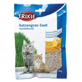 Hierba para gatos con bandeja