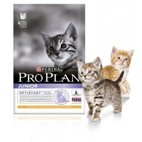Purina Pro Plan Junior Gato Pollo