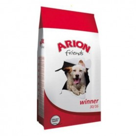 Arion Friends Winner