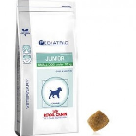 Royal Canin Pediatric Junior Small Dog