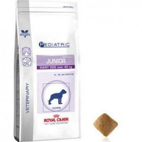 Royal Canin Pediatric Junior Giant Dog
