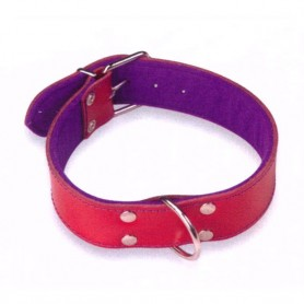 Collar Cuero Superfelt Color