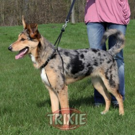 Easy Walk Basic de Trixie