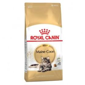 Royal Canin Maine Coon