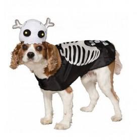 Disfraz Esqueleto para perro , Ropa para perros, Disfraces