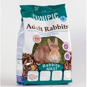 Conejo Adult