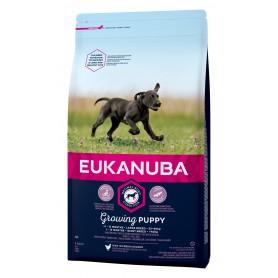 Pienso Eukanuba Puppy Large Breed para cachorros