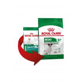 Pienso para perros Royal Canin Mini Adult 8+