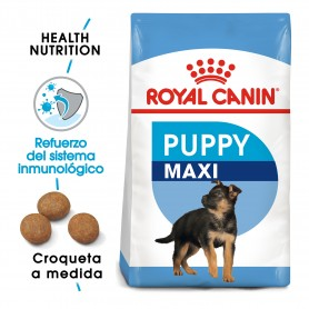 Pienso Royal Canin Maxi Junior para cachorros