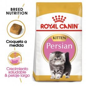 Pienso Royal Canin Kitten Persian para gatitos raza Persa