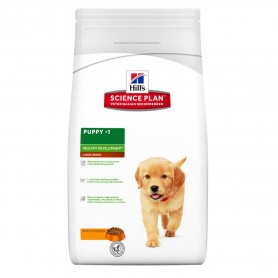 Pienso Hill's Science Plan Puppy Healthy Development Razas Grandes con Pollo
