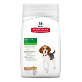 Pienso Hill's Science Plan Puppy Healthy Development Cordero y Arroz